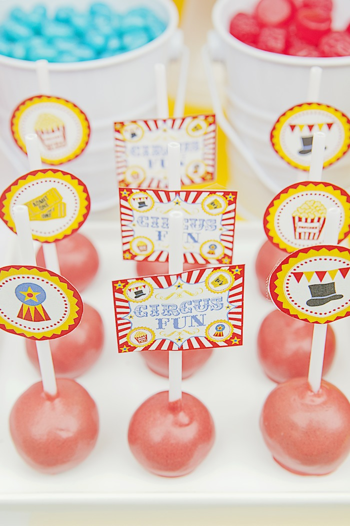 festa-circo-infantil-6