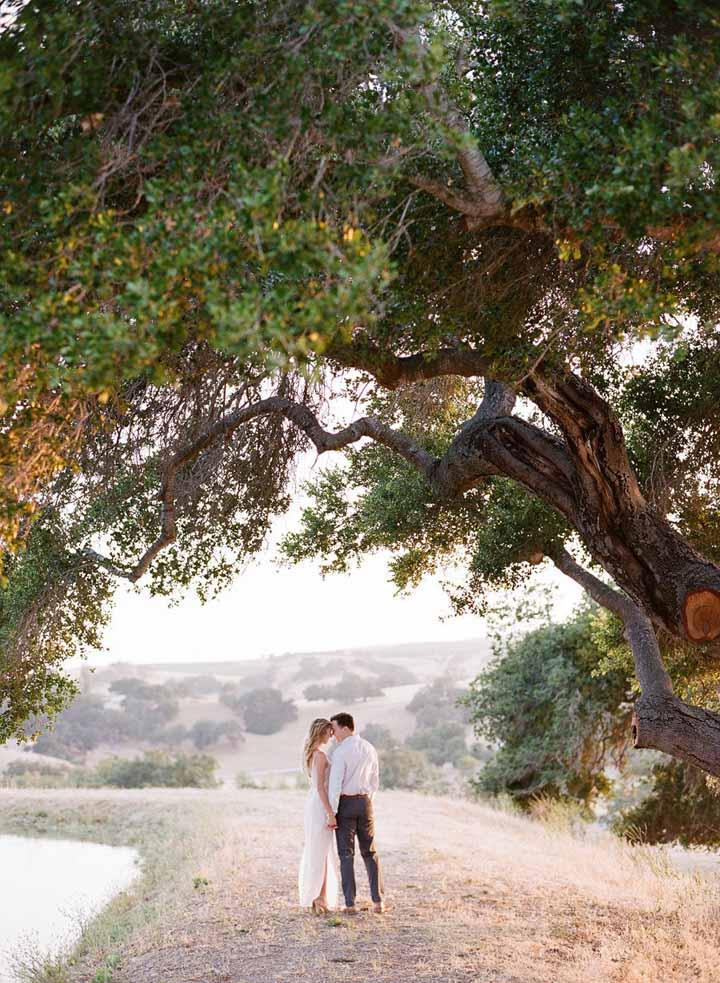 Emoldurados por uma árvore centenária: um cenário deslumbrante