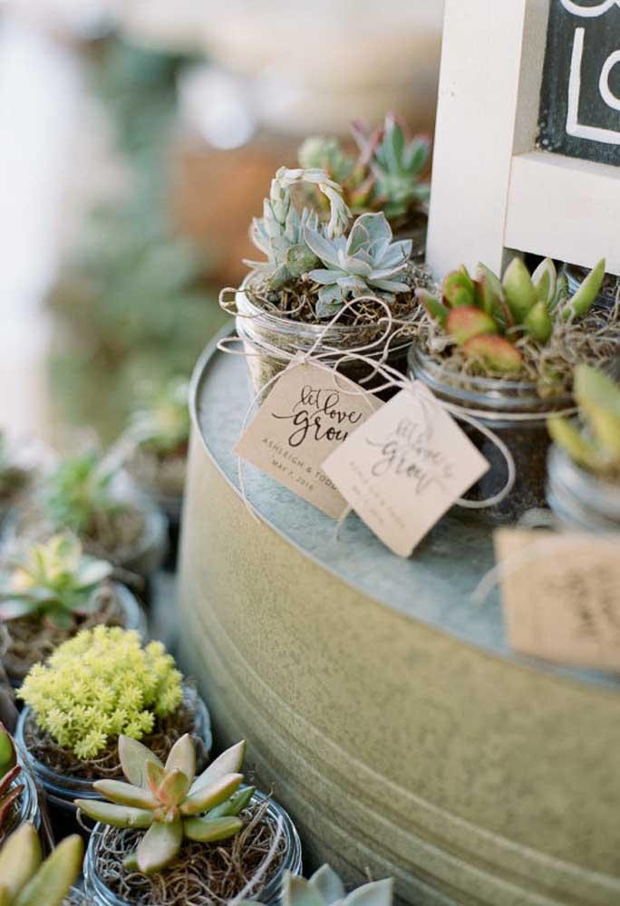 O que você acha de entregar uma muda de planta para cada convidado?