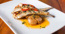 Confira as melhores receitas com sardinha