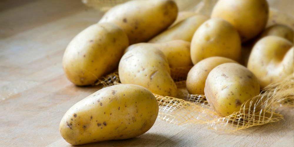 Confira as melhores receitas de batata em conserva