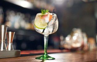 Confira as melhores receitas de drinks com gin