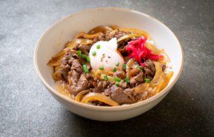 Veja as melhores receitas de Gyudon para experimentar em casa